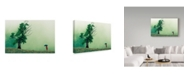 "Trademark Global Sorin Vidis 'Strange Dialog' Canvas Art - 24"" x 2"" x 16"""