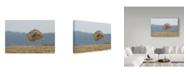 "Trademark Global Milan Zygmunt 'Great Horned Owl Flying' Canvas Art - 47"" x 2"" x 30"""