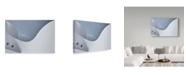"""Trademark Global Jeroen Van De 'Graceful' Canvas Art - 32"""" x 2"""" x 22"""""""
