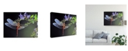 "Trademark Global Jimmy Hoffman 'Dragonfly Red' Canvas Art - 19"" x 2"" x 14"""