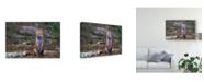 """Trademark Global Jim Cumming 'Fox Zen Algonquin Park' Canvas Art - 47"""" x 2"""" x 30"""""""
