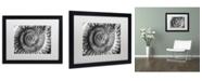 "Trademark Global Moises Levy 'Amonita 2' Matted Framed Art - 16"" x 20"" x 0.5"""