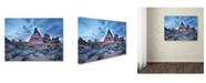 "Trademark Global Moises Levy 'Cottonwood I' Canvas Art - 47"" x 35"" x 2"""