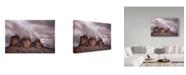 "Trademark Global Damiano Serra 'Foggy Cover' Canvas Art - 47"" x 30"" x 2"""