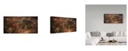 "Trademark Global Nicodemo Quaglia 'Poppy' Canvas Art - 10"" x 19"" x 2"""