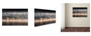 "Trademark Global Miha Pavlin 'Suping On Bohinj Lake' Canvas Art - 32"" x 22"" x 2"""