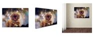 "Trademark Global Svetlana Melik Nubarova 'Dialing Spring' Canvas Art - 47"" x 35"" x 2"""