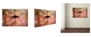 "Trademark Global Muhammad Berkati 'Glamor And Red Dot' Canvas Art - 32"" x 22"" x 2"""