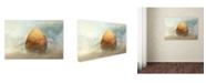 "Trademark Global Piet Flour 'Genesis' Canvas Art - 19"" x 12"" x 2"""