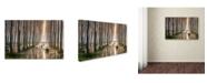 "Trademark Global Raffaele Spettoli 'Rains Of Spring' Canvas Art - 47"" x 30"" x 2"""