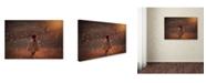 """Trademark Global Jake Olson 'Symphony' Canvas Art - 24"""" x 16"""" x 2"""""""