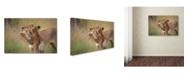"Trademark Global Jeffrey C Sink 'Hugs' Canvas Art - 32"" x 22"" x 2"""