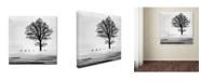 "Trademark Global Dansiga 'Roes' Canvas Art - 24"" x 24"" x 2"""