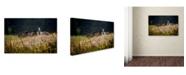 "Trademark Global Milan Malovrh 'Our Garden' Canvas Art - 32"" x 22"" x 2"""