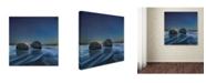 "Trademark Global Yan Zhang 'Be Together' Canvas Art - 14"" x 14"" x 2"""