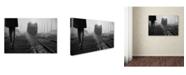"Trademark Global Nicoleta Gabor 'November Passengers' Canvas Art - 47"" x 30"" x 2"""