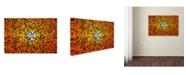 "Trademark Global Nicodemo Quaglia 'Flight Of Birds At Sunset' Canvas Art - 47"" x 30"" x 2"""