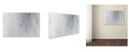 "Trademark Global Jakob Sanne 'Lines' Canvas Art - 47"" x 30"" x 2"""