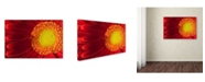 "Trademark Global PIPA Fine Art 'Nature's Beauty' Canvas Art - 12"" x 19"""