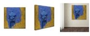 "Trademark Global Joarez 'Explosao' Canvas Art - 18"" x 18"""