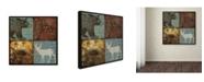 "Trademark Global Stephanie Marrott 'Lodge 4 Patch III' Canvas Art - 18"" x 18"""