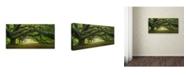 "Trademark Global Moises Levy 'Pasage 1 OL' Canvas Art - 16"" x 32"""