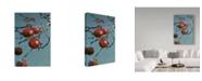 "Trademark Global Ron Parker 'Winter Apples Purple Finch' Canvas Art - 16"" x 24"""