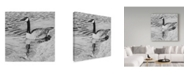 "Trademark Global Rusty Frentner 'Lone Goose' Canvas Art - 18"" x 18"""