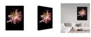 "Trademark Global Susan S. Barmon 'Spent Peony' Canvas Art - 18"" x 24"""
