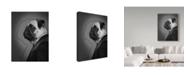 "Trademark Global J Hovenstine Studios 'Alfred Flat' Canvas Art - 18"" x 24"""