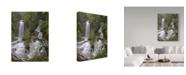 "Trademark Global J.D. Mcfarlan 'Twin Falls, Sc' Canvas Art - 24"" x 32"""
