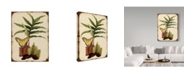 "Trademark Global Jean Plout 'Ferns On Vintage Tin' Canvas Art - 18"" x 24"""