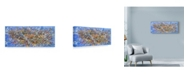 "Trademark Global Sharon Pitts 'Nest Birds' Canvas Art - 19"" x 8"""