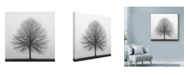 "Trademark Global Nicholas Bell Photography 'Winter Trio 1' Canvas Art - 18"" x 18"""