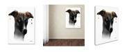 "Trademark Global Marlene Watson 'Greyhound' Canvas Art - 18"" x 24"""