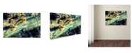 "Trademark Global PIPA Fine Art 'Aged Mushroom' Canvas Art - 22"" x 32"""