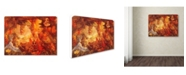 "Trademark Global Vintage Apple Collection 'CA Fairy 22' Canvas Art - 35"" x 47"""