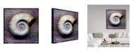 """Trademark Global John W. Golden 'Moon Snail' Canvas Art - 24"""" x 24"""""""