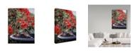 "Trademark Global Ron Parker 'Robins In A Birdbath' Canvas Art - 24"" x 32"""