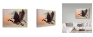 "Trademark Global Rusty Frentner 'Canada Geese' Canvas Art - 35"" x 47"""
