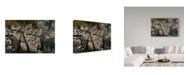 "Trademark Global Wilhelm Goebel 'Rimrock Covey Chukars' Canvas Art - 30"" x 47"""