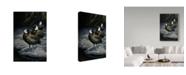 """Trademark Global Wilhelm Goebel 'White Faced Whistling Ducks' Canvas Art - 30"""" x 47"""""""