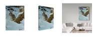 "Trademark Global Wilhelm Goebel 'Snow Cover Cottontail' Canvas Art - 35"" x 47"""