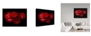 "Trademark Global Susan S. Barmon 'Red Dahlias 5' Canvas Art - 24"" x 32"""
