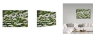 "Trademark Global Incredi 'White Daisies' Canvas Art - 32"" x 22"""
