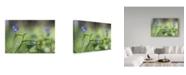 "Trademark Global Incredi 'Blue Prince' Canvas Art - 32"" x 22"""