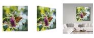 """Trademark Global Kurt Shaffer 'This Flower Is Taken' Canvas Art - 35"""" x 35"""""""
