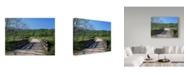 "Trademark Global J.D. Mcfarlan 'Smokies 7' Canvas Art - 47"" x 35"""