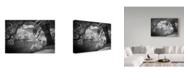 "Trademark Global J.D. Mcfarlan 'Ir Middleton Place, Sc 2' Canvas Art - 47"" x 30"""