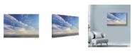 """Trademark Global Robert Goldwitz 'Soft Sky' Canvas Art - 32"""" x 22"""""""